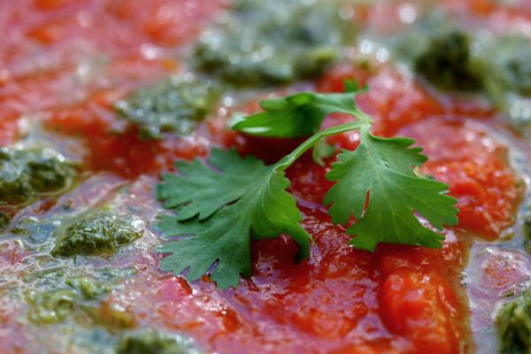 red pepper soup - cilantro