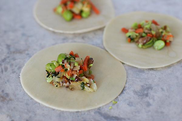 vegetable pot stickers
